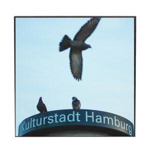 Kulturstadt Hamburg #ih501