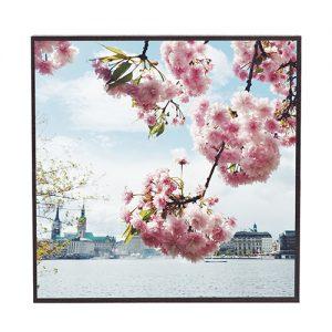 Frühling #fr302